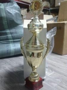 Cúp bóng đá giá rẻ mã CUP03