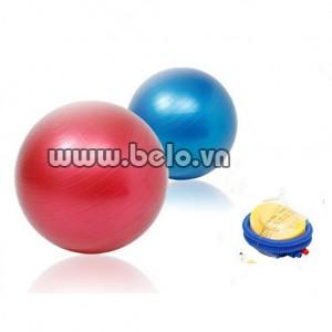 Bóng tập Yoga Gym Ball đẹp