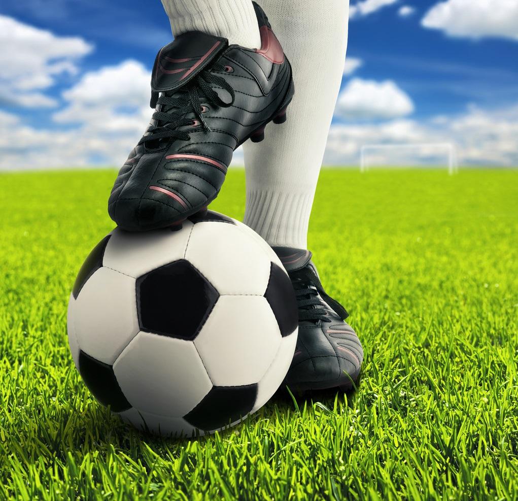 Và để chọn quả bóng đá chất lượng thì các bạn nên chọn những thương hiệu được nhiều người dùng như quả bóng đá Động Lực bởi quả bóng được thiết kế ...