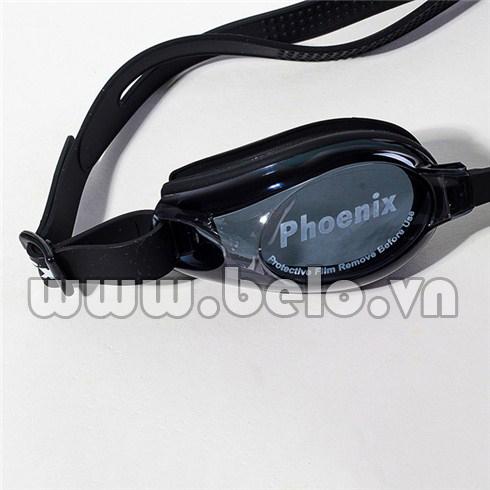 kinh-boi-phoenix-401-3