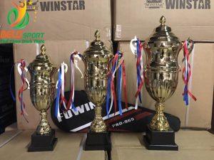 Cúp vàng thể thao 2018 giá rẻ nhất Việt Nam