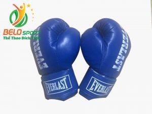 Găng tay boxing đấm bốc người lớn Everlast chính hãng cao cấp