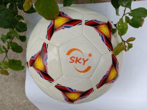 Quả Bóng đá France giá rẻ tập luyện màu trắng