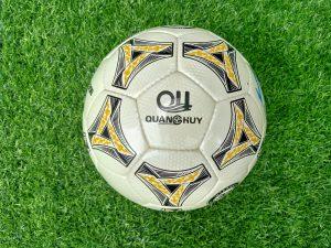 Quả bóng đá Quang Huy Passion PS 2019 size 5