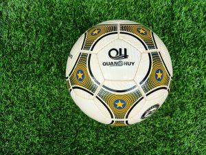 Quả bóng đá Quang Huy Passionate PSN 2019 size 4